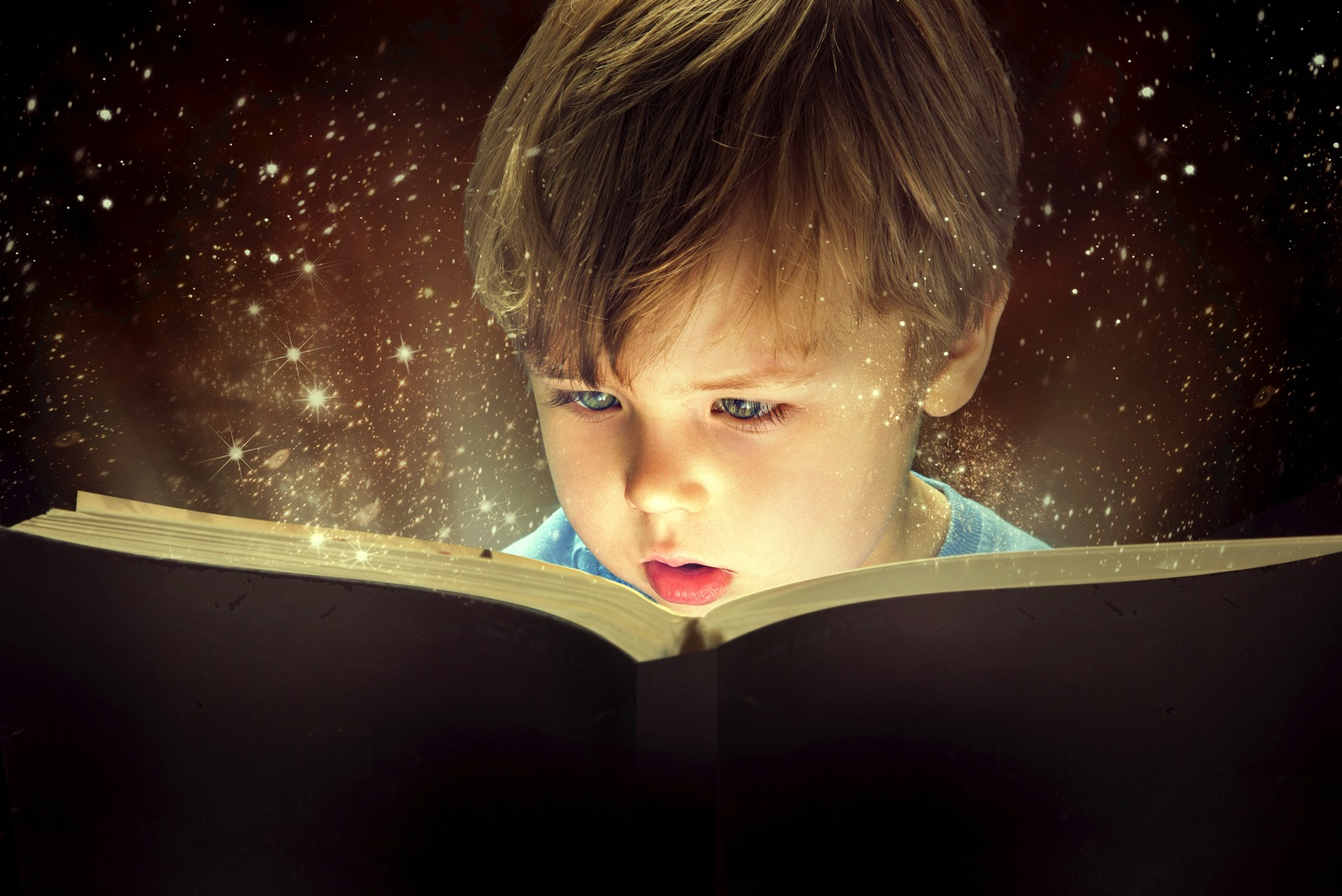 Young child reading a book